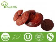 Ganoderma Spore Powder
